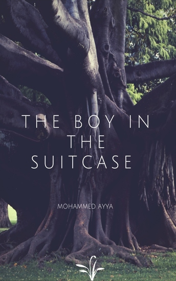 The Boy In The Suitcase - cover