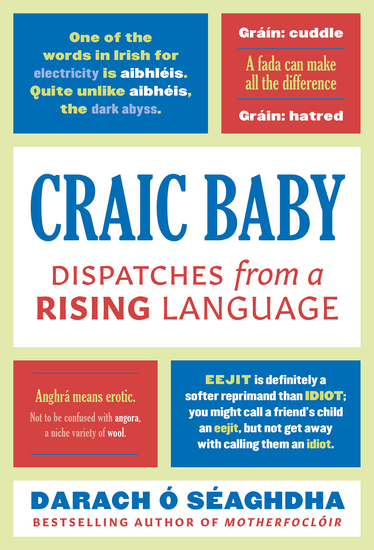 Craic Baby - Dispatches from a Rising Language - cover