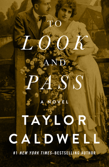 To Look and Pass - A Novel - cover