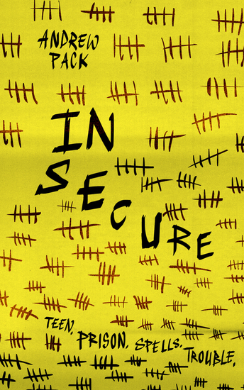 In Secure - cover