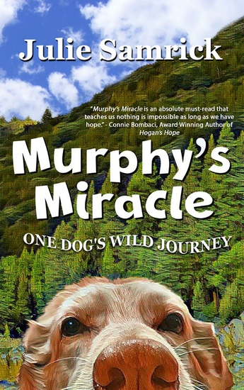 Murphy's Miracle - One Dog's Wild Journey - cover