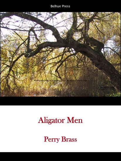 Alligator Men - An electrifying story of suspense terror and swampland eros—Deliverance meets Brokeback Mountain—from a master storyteller at the height of his art - cover