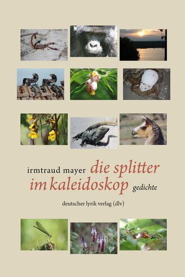 die splitter im kaleidoskop - gedichte - cover