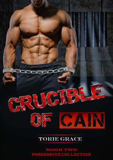 Crucible of Cain - cover