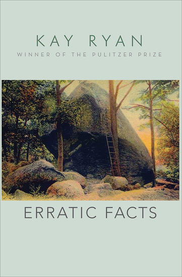 Erratic Facts - cover