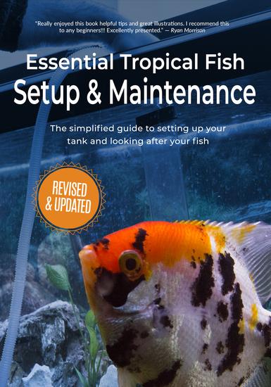Essential Tropical Fish - Setup & Maintenance Guide - cover