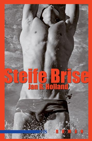 Steife Brise - Roman - cover