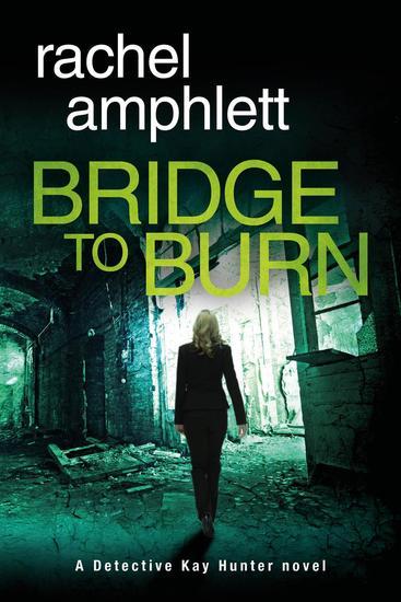 Bridge to Burn - Kay Hunter #7 - cover