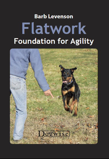 Flatwork - Foundation for Agility - cover