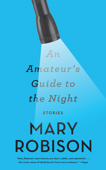 An Amateur's Guide to the Night - Stories - cover