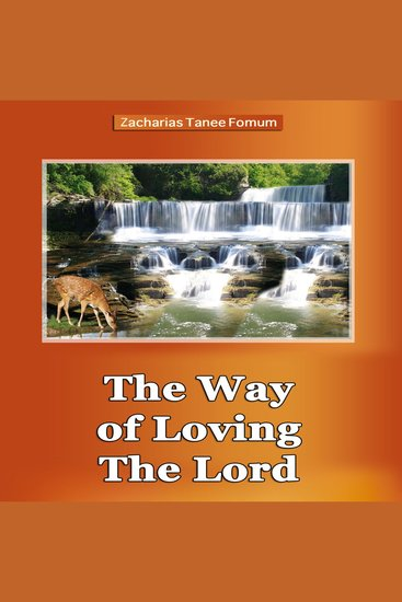 The Way of Loving The Lord - Spiritual Romance - cover