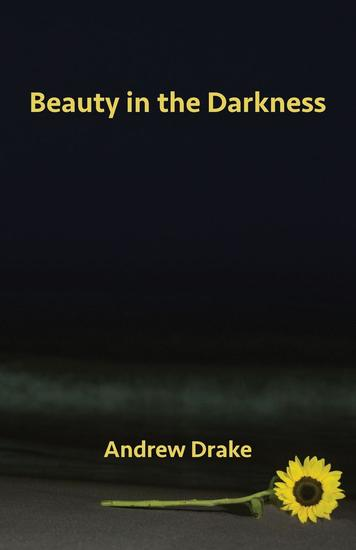 Beauty in the Darkness - cover