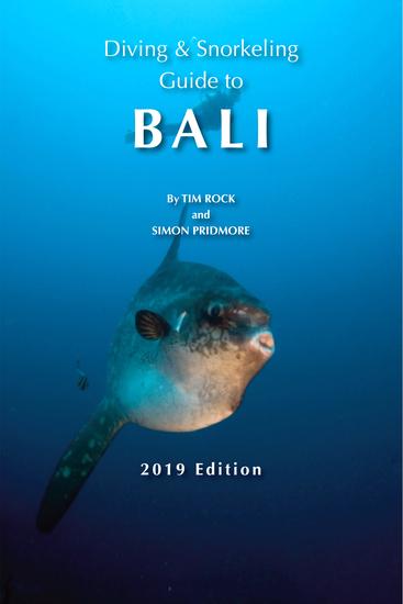 Diving & Snorkeling Guide to Bali - cover