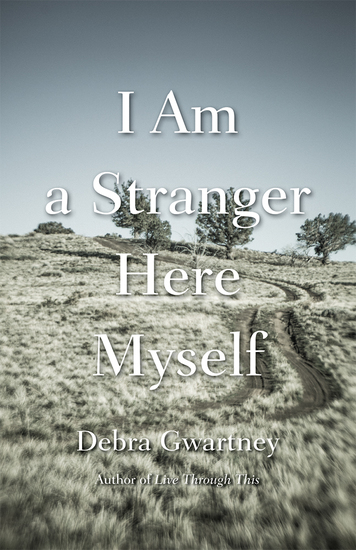 I Am a Stranger Here Myself - cover