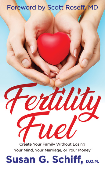 Fertility Fuel - Create Your Family Without Losing Your Mind Your Marriage or Your Money - cover