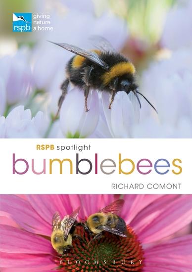RSPB Spotlight Bumblebees - cover
