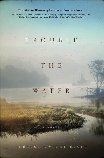 Trouble The Water - A NOVEL - cover