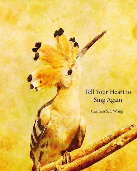Tell Your Heart to Sing Again - cover