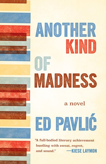 Another Kind of Madness - A Novel - cover
