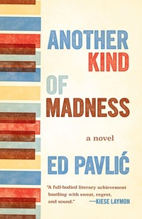 Another Kind of Madness - A Novel