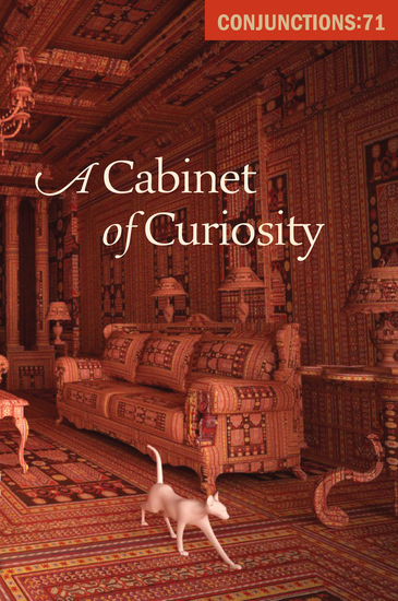 A Cabinet of Curiosity - cover