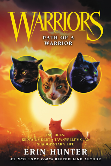 Warriors: Path of a Warrior - cover