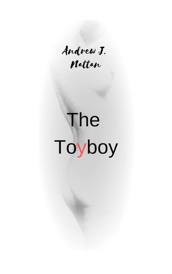 The Toyboy - cover
