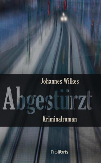 Abgestürzt - Franken-Krimi - cover