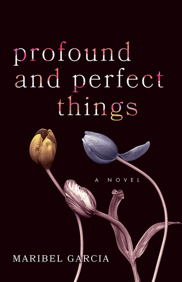 Profound and Perfect Things - A Novel - cover