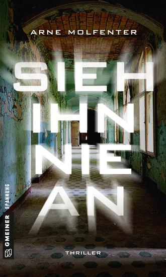 Sieh ihn nie an - Berlin-Thriller - cover