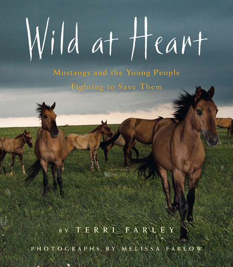 Wild at Heart - Mustangs and the Young People Fighting to Save Them - cover