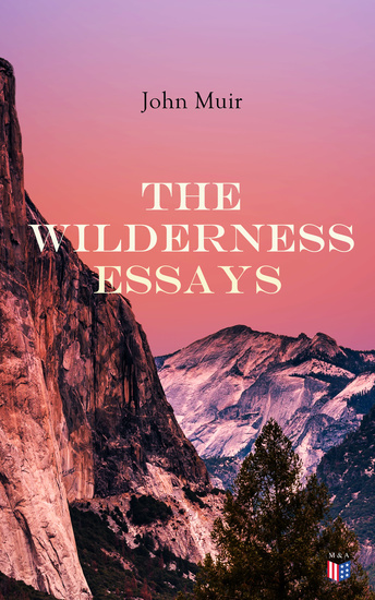 The Wilderness Essays - cover