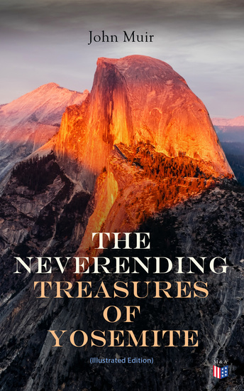 The Neverending Treasures of Yosemite (Illustrated Edition) - cover
