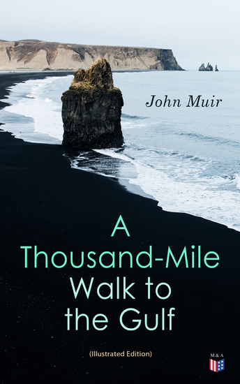 A Thousand-Mile Walk to the Gulf (Illustrated Edition) - cover