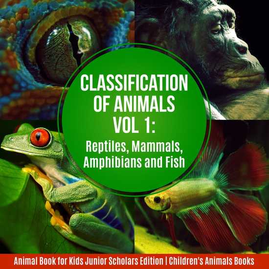 Classification of Animals Vol 1 : Reptiles Mammals Amphibians and Fish | Animal Book for Kids Junior Scholars Edition | Children's Animals Books - cover