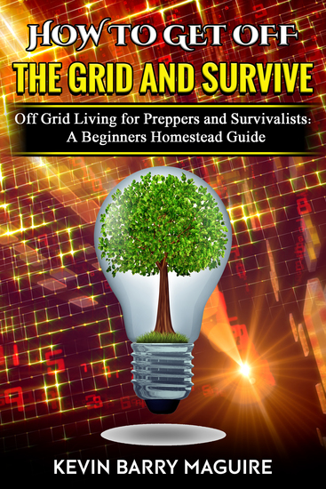 How to Get Off the Grid and Survive - Off Grid Living for Preppers and Survivalists: A Beginners Homestead Guide - cover