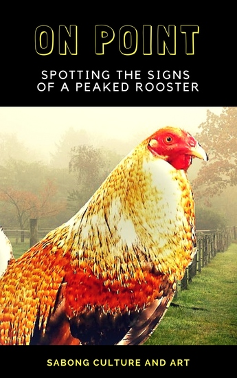On Point - Spotting the Signs of A Peaked Rooster - cover