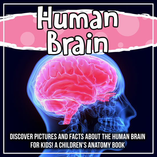 Human Brain: Discover Pictures and Facts About The Human Brain For Kids! A Children's Anatomy Book - cover