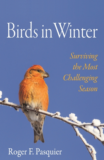 Birds in Winter - Surviving the Most Challenging Season - cover