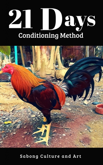 21 Days Conditioning Method - cover