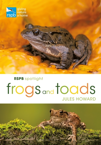 RSPB Spotlight Frogs and Toads - cover