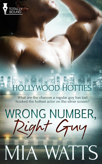Wrong Number Right Guy - cover