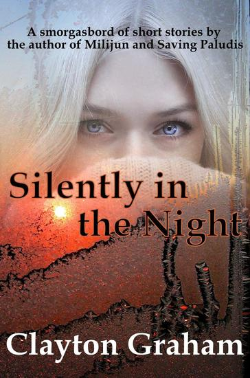 Silently in the Night - cover