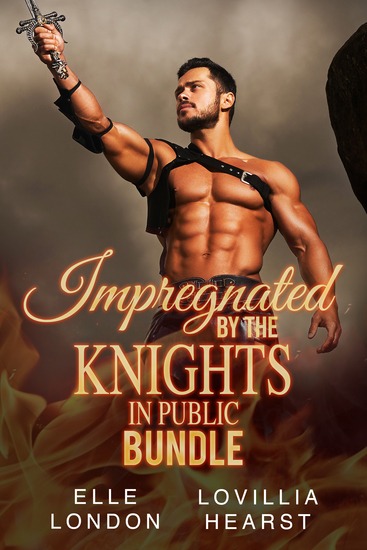 Impregnated By The Knights In Public Bundle - cover