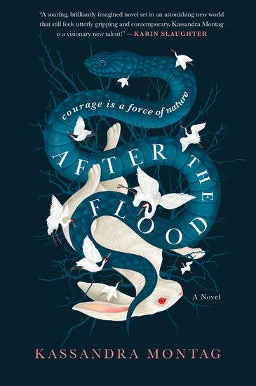 After the Flood - A Novel - cover