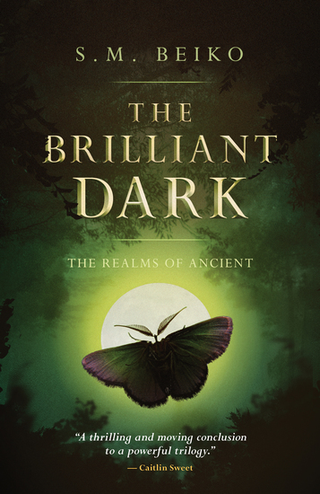 The Brilliant Dark - The Realms of Ancient Book 3 - cover