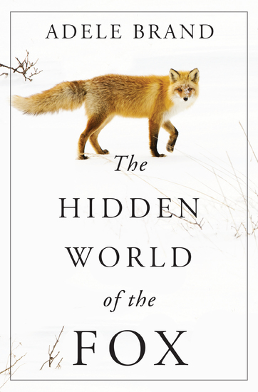 The Hidden World of the Fox - cover