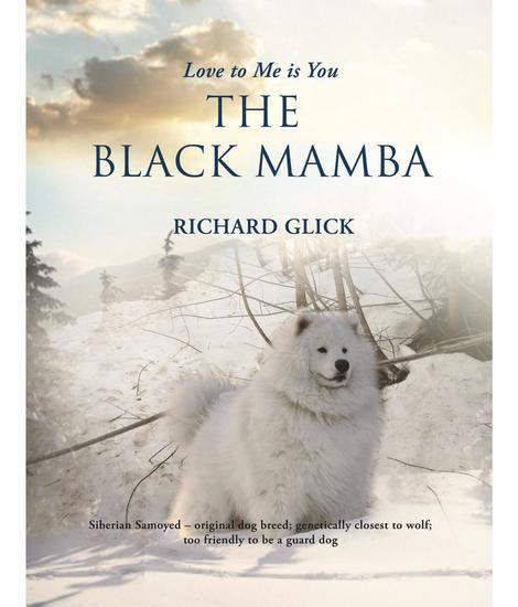 Love to me is you the black mamba - cover