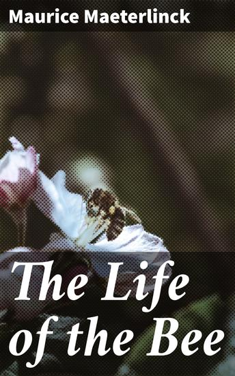 The Life of the Bee - cover