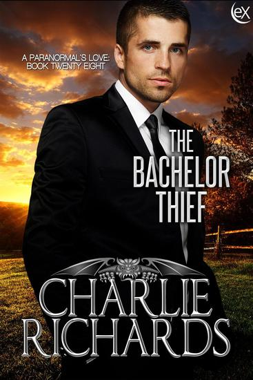 The Bachelor Thief - A Paranormal's Love #28 - cover